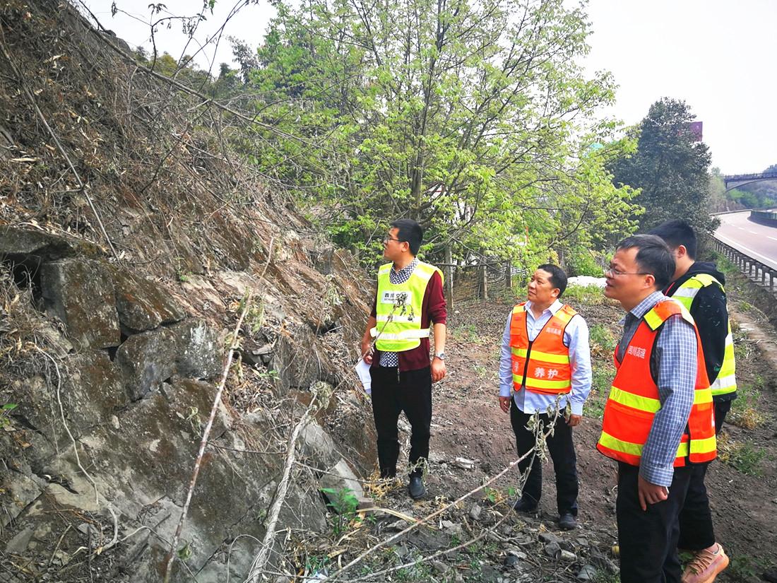 公司养护工程部前往资阳管理处开展边坡实地勘查工作